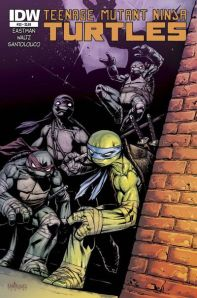 """Teenage Mutant Ninja Turtles"" #33 from IDW. Cover art by Mateus Santolouco."